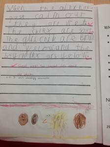 Children's Writing c